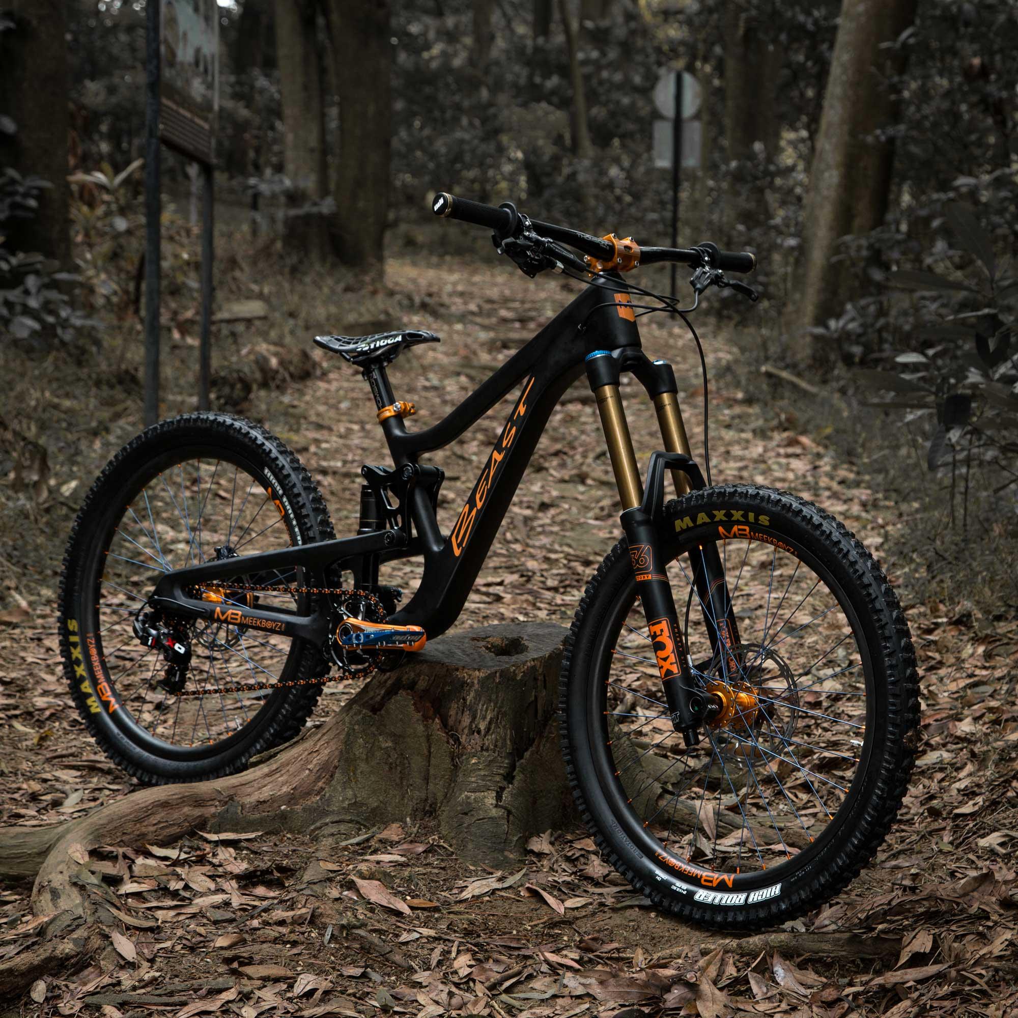 Beast Downhill MTB - 24\